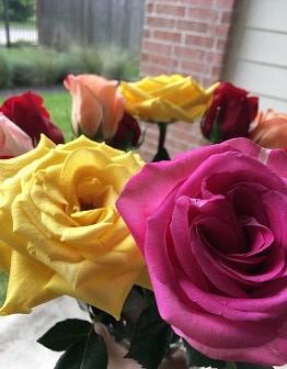 birthday roses 2018